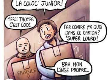 Trouve-toi un vrai travail Sebi Comis Sebi Comics Thomas Cyrix Comic Webcomic français Bande dessiné BD Déménagement Cartons
